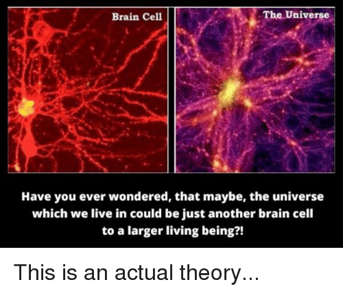 the-universe-brain-cell-have-you-ever-wondered-that-maybe-11219063.png