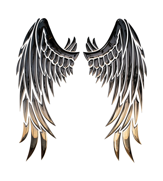 Religion-Angel-Wings-Wings-Angel-3d-1740459.png.2bcf4b7efb0e1050315b88723ad459e9.png